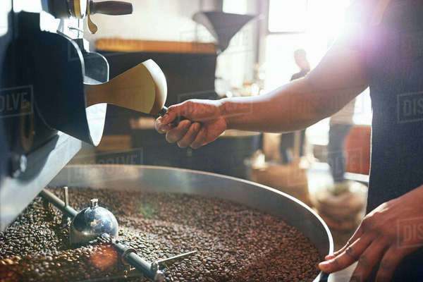 Male coffee roaster roasting coffee beans Royalty-free stock photo