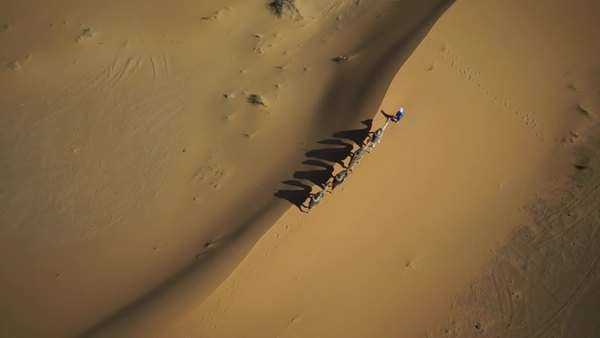 Wide shot, point-of-view zoom out Tupareg man with camel train in desert at Morocco Royalty-free stock video