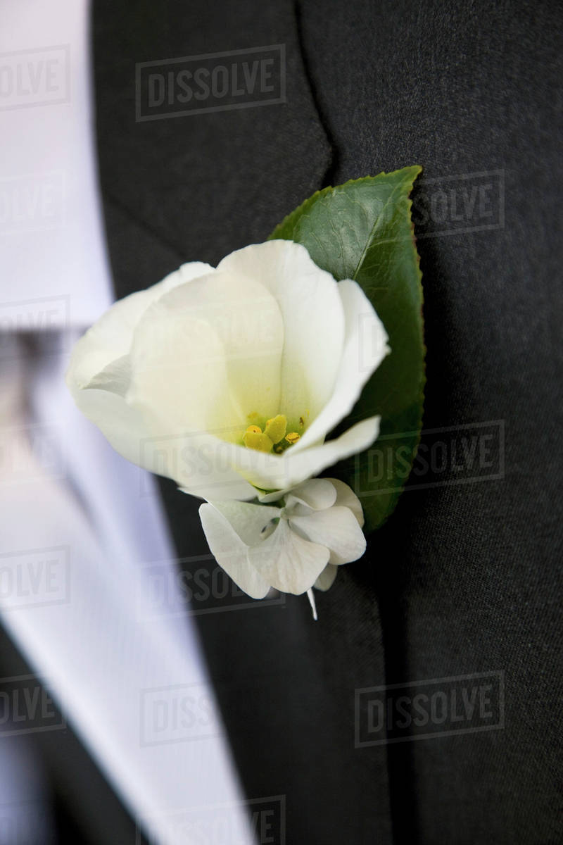Detail Of A White Flower Boutonniere On A Jacket Lapel Stock Photo