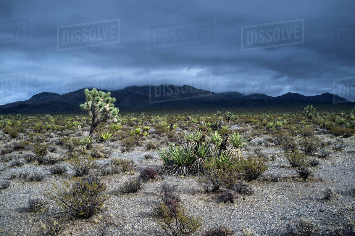 view of desert landscape and mountains against dramatic sky mojave