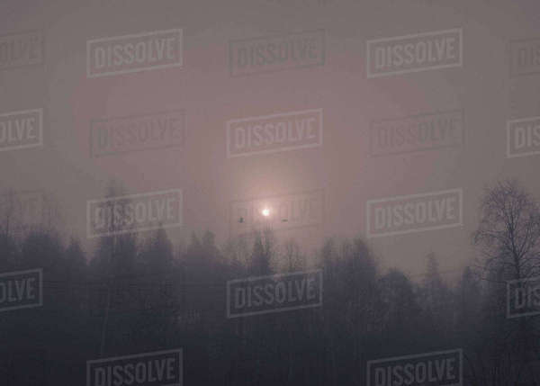 Silhouette trees against clear sky at night during foggy weather Royalty-free stock photo