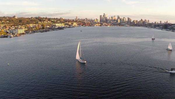 Seattle, Washington: Aerial view of sailboats on Lake Union Royalty-free stock video
