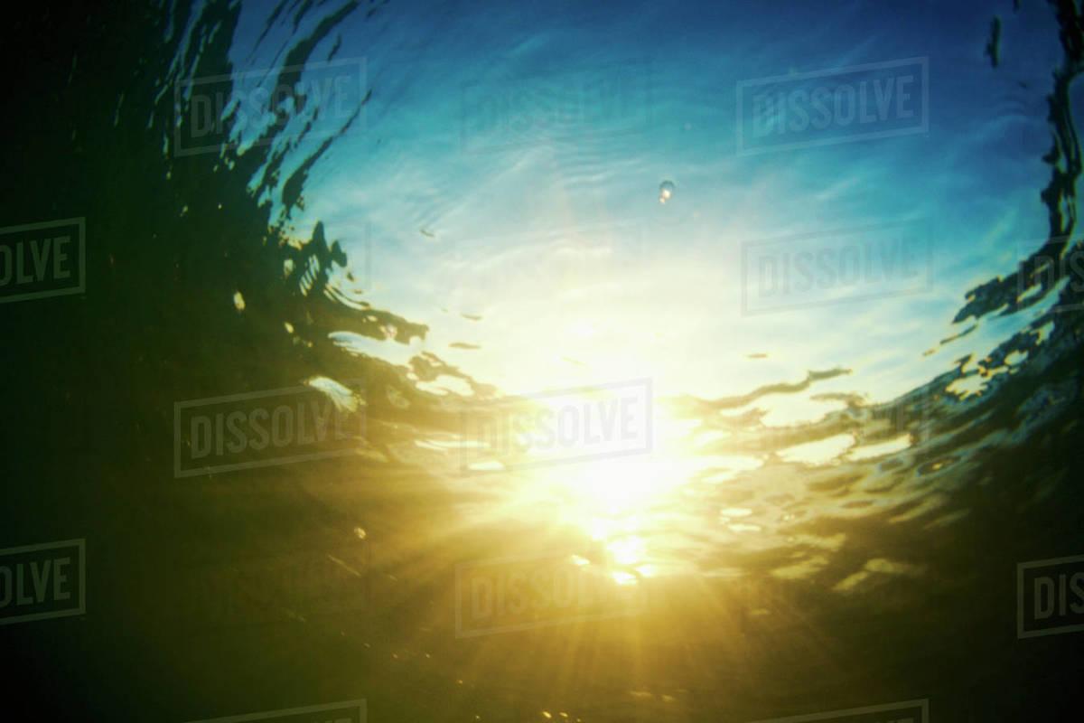 Underwater view tranquil sunshine Royalty-free stock photo